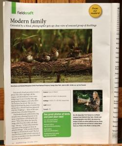 Birdwatching Magazine, October 2015